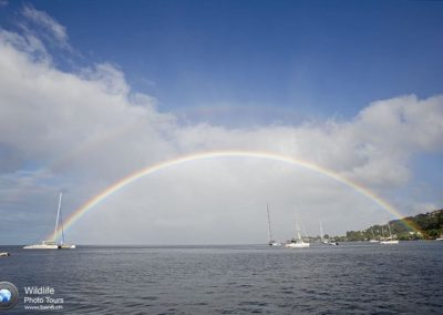 Raibow, Dominica, Caribbean Sea, Atlantic Ocean